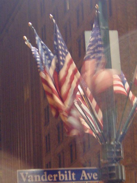 Flags on Vanderbuilt Avenue Light Poles